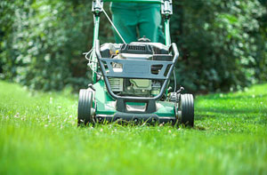 Lawn Care Verwood (01202)