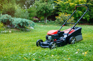 Lawn Care Margate (01843)