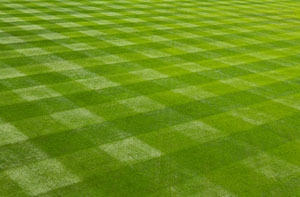 Lawn Care Ingatestone (01277)